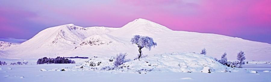 Frosty Fantasy, Graham Macfarlane