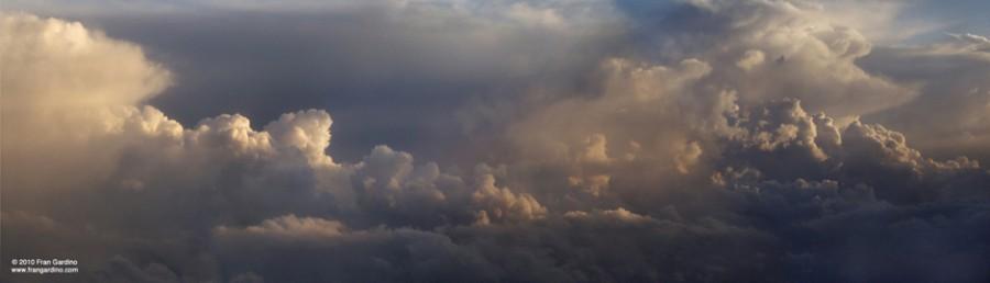 Moses Sky Pan, Gardino